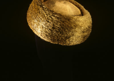 The Golden Fleece. Headpiece. Back